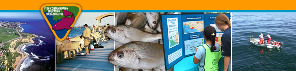 Fish Contamination Education Collaborative (FCEC)